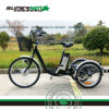 Lithium Battery Electric Cargo Bicycle for Farmer