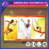 pH4.81 LED Screen for Indoor Concert Video Display