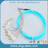 12 Core LC/Upc-50/125um Om3 mm Bunch Fiber Optical Pigtail
