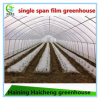 Easy Manual Poly Greenhouse for Sale