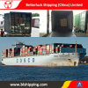 Land Transport From China to Belarus Brest Container Shipping Service