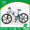48V 500W 600W Electric Cycle with Motor Rear Drive Sport Ebike