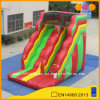 Nice Mini Inflatable Water Slide (AQ09197)