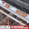 Chicken Use and Low Carbon Steel Wire Chicken Layer Cage