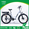 27.5 Inch Electrical Moped