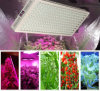 Horticulture 1200 Watt LED Grow Light for Indoor Plant Growing