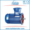 25 HP Three Phase Explosion-Proof Motor with Atex Certificate