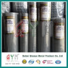 2X2 Welded Wire Mesh Roll / Stainless Steel Wire Mesh