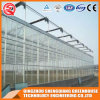 Commercial/ Agriculture Steel Structure Polycarbonate Sheet Greenhouse for Vegetable