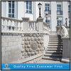 G681 Light Pink Granite Stone Outdoor Baluster and Handrail