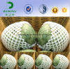 Size Customized Eco Friendly Packaging Food Grade Polythene Foam Mesh Tube Netting