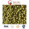 New Crop Good Quality Green Mung Bean