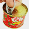 Organic Canned 70g Tomato Paste with Good Price