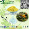 Formulation Blend Juice Powder / Instant Fruit Juice Powder