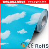High Quality Indoor Decoration Bathroom Washable Wallpaper Wallcovering