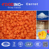 High Quality Dehydrated Carrots Particles Granules Manufacturer