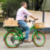 250W/350W/500W Electric Delivery Bicycle/Delivery Bike/E Cargo Bike/Multi-Purpose Electric Bicycle/Cargo Pedelec/Cargo Bicycle/Courier Bike/Coffee Bike, En15194