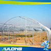 Greenhouse Project Engineering Technology Chinese Manufacturers for Flower Culture