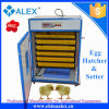Digital Control Small Automatic Chicken Eggs Hatching Machine for Sale