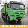 Bright Green Colour 375HP Dump Truck 8X4 with Excellent Quality Low Price in Africa Hot Sale
