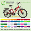 Classic 36V/250W Motor & 10ah Lithium Battery E Bike (JB-TDF03Z)