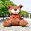 Giant Super Nice Inflatable Plush Bear for Produce