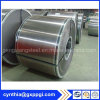Building Material Cold Rolled Stainless Steel Coil in Stock