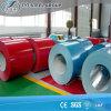 PPGI Prepaint Galvanized Steel Coil From Shandong