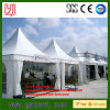 Large Waterproof Aluminum Alloy 6061-T6 Garden Pop up Pagoda Tent
