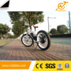 2017 1000W Newest Lithium Battery Electric Fat Tyre Bike