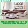 Contemporary Living Room Leisure Home Sofa