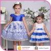 2014 New Wedding Girl Dress, Fancy Dresses for Baby Girl