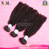 Without Chemical Processed 100% Indian Human Kinky Curly Hair