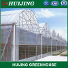 Venlo Polycarbonate Sheet Commercial/Venlos Green House Polycarbonate PE Plastic Film Greenhouse for Agriculture/Crop/Corn/Tomato/Flowers/Farming