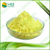 100% Rapidly Soluble in Water Ginger Root Extract