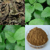 Plant Extract Lemon Balm Extract 4: 1 3% 5% Rosmarinic Acid Factory Supply High Antibacterial