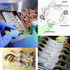Hot Sale Shrimp Peeling Machine, Shrimp Peeler Machine, Shrimp Processing Machine