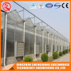High Quality Polycarbonate Sheet Greenhouses for Agricultural / Garden