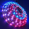 Free Sample Alibaba Wholesale RGBW Rgbww LED Strip Ledstrip 5050 for Decoration