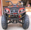 Hot Selling China Cheap ATV