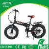 20 Inch Fat Tire Electric Hybrid Bikes/ Dirt Bike with Hidden Battery