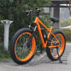 48V 500W Fat Tire MTB Electric Bike
