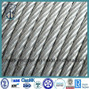 Galvanized Steel Wire Rope 6*19