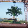 Steel Telecom Pole Antenna Mast Camouflaged Communication Pine Plam Tree Tower