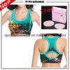 Free Sample High Quality New Design Ladies Sport Bra