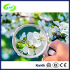 Transparent Mini Magnifier LED Light Magnifier Handheld Magnifier in High Quality