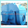 Y, Yks, Ykk Series 6kv Medium-Size High Voltage Motor