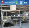 Baby Broiler Chicken Cage for Poultry Farming