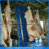 Slaughering Machine in Poultry House with Full Set Automatic Equipment and Prefab House Construction
