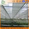 Greenhouse Inside Shading System for Vegetables